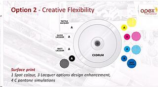 Creative Flexibility-Option 2(Apex).jpg