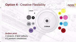 Creative Flexibility-Option 4(Apex).jpg